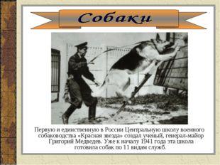Первую и единственную в России Центральную школу военного собаководства «Кра
