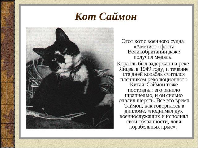 Кот Саймон Этот кот с военного судна «Аметист» флота Великобритании даже полу...