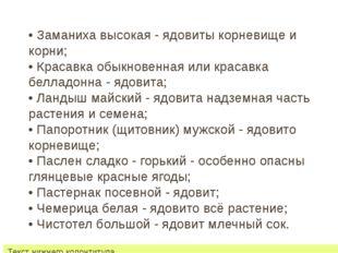 22 июля 2012 г. Текст нижнего колонтитула • Заманиха высокая - ядовиты корнев