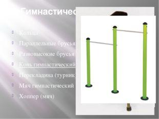 Гимнастические снаряды. Кольца Параллельные брусья Разновысокие брусья Конь г