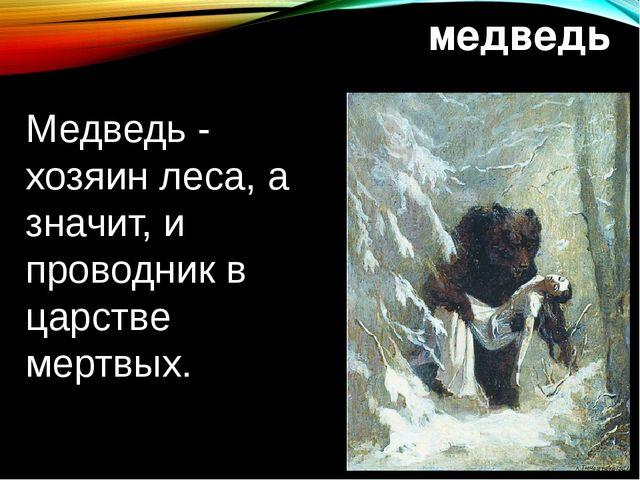 медведь Медведь - хозяин леса, а значит, и проводник в царстве мертвых.
