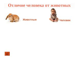 Отличие человека от животных Животные Человек 1. Изготавливает орудия труда и