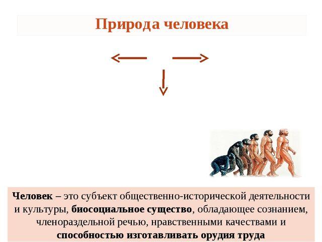 Природа человека Ч Биологическое начало инстинкты биологическая программа раз...