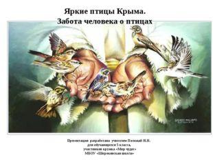 Яркие птицы Крыма. Забота человека о птицах Презентация разработана учителем