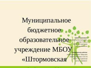 Муниципальное бюджетное образовательное учреждение МБОУ «Штормовская школа-