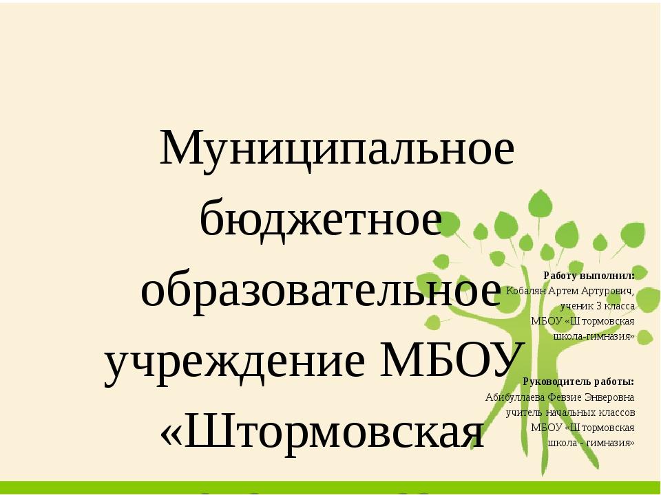 Муниципальное бюджетное образовательное учреждение МБОУ «Штормовская школа-...