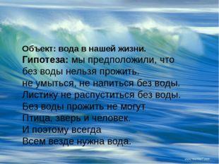 Объект: вода в нашей жизни. Гипотеза:мы предположили, что без воды нельзя пр