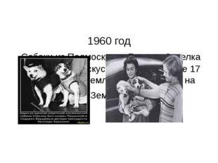1960 год Собаки из Подмосковья Белка и Стрелка совершили на искусственном сп