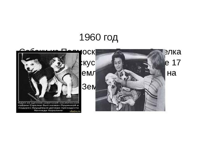 1960 год Собаки из Подмосковья Белка и Стрелка совершили на искусственном сп...