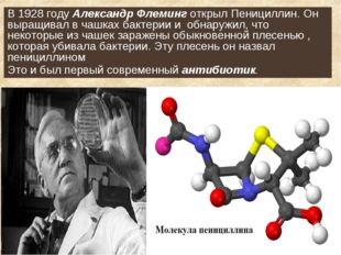 В 1928 году Александр Флеминг открыл Пенициллин. Он выращивал в чашках бактер