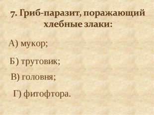 А) мукор; Б) трутовик; В) головня; Г) фитофтора.