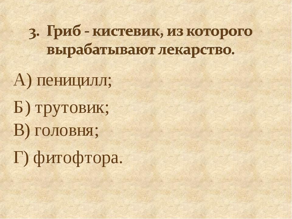 А) пеницилл; Б) трутовик; В) головня; Г) фитофтора.