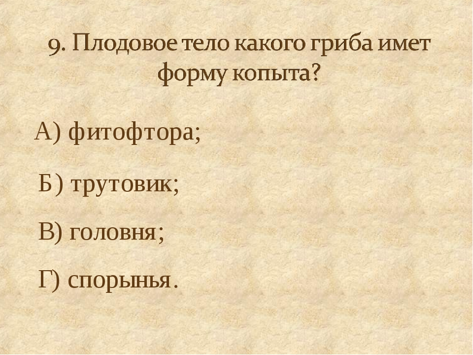 А) фитофтора; Б) трутовик; В) головня; Г) спорынья.