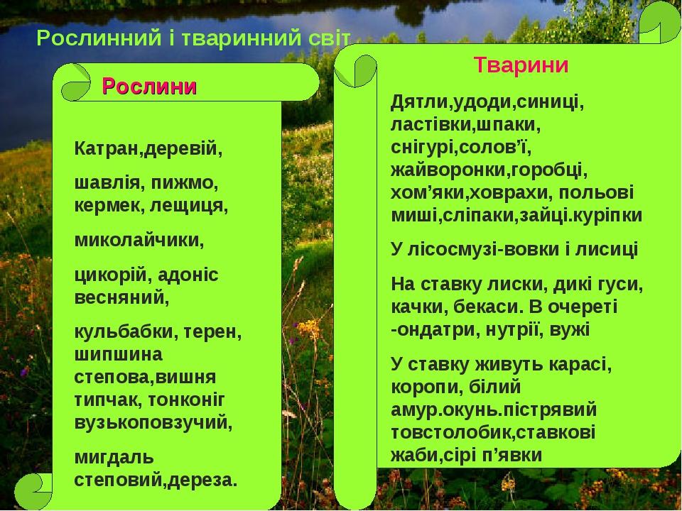Рослинний і тваринний світ Катран,деревій, шавлія, пижмо, кермек, лещиця, мик...