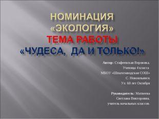Автор: Стафеевская Вероника, Ученица 4 класса МБОУ «Шпалозаводская СОШ» С. Но