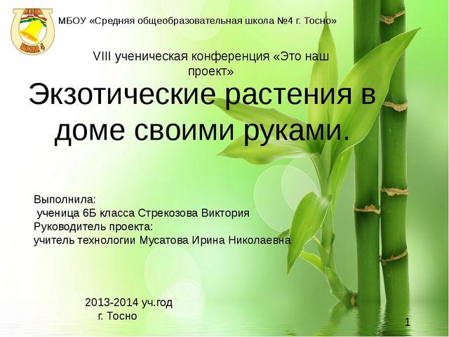 Экзотические растения в доме своими руками. 2013-2014 уч.год  г. Тосно...