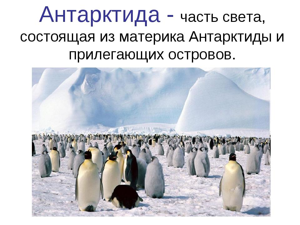Антарктида - часть света, состоящая из материка Антарктиды и прилегающих остр...