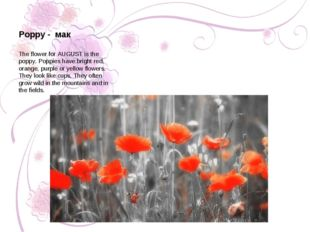 The flower for AUGUST is the poppy. Poppies have bright red, orange, purple o