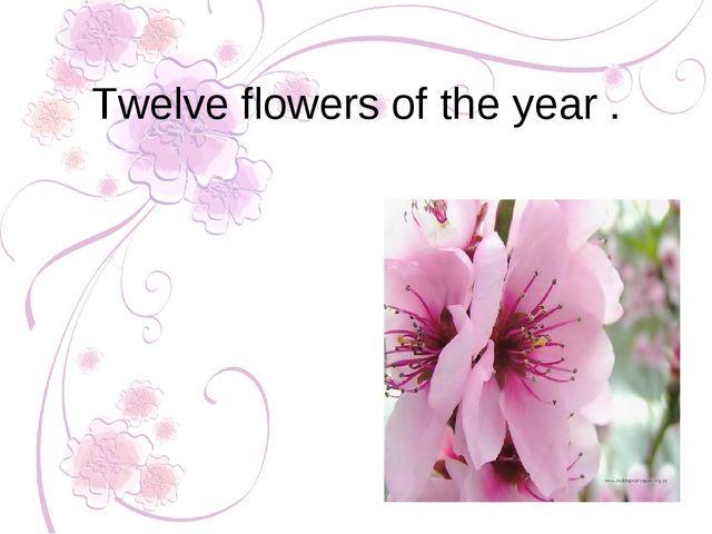 Twelve flowers of the year .