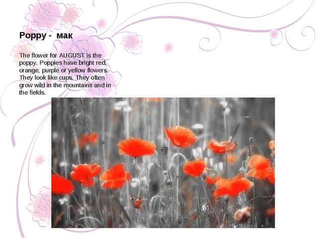The flower for AUGUST is the poppy. Poppies have bright red, orange, purple o...