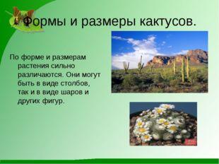 Формы и размеры кактусов. По форме и размерам растения сильно различаются. Он