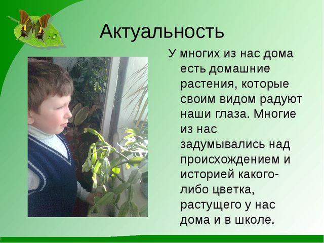 Актуальность У многих из нас дома есть домашние растения, которые своим видом...