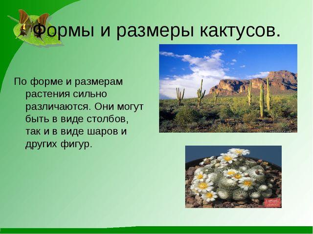 Формы и размеры кактусов. По форме и размерам растения сильно различаются. Он...