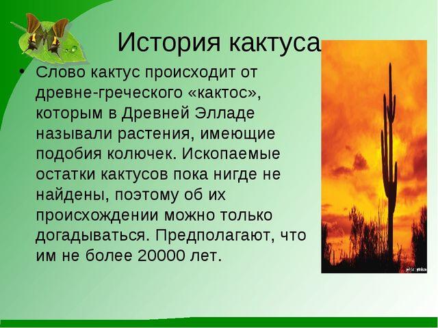 История кактуса Слово кактус происходит от древне-греческого «кактос», которы...
