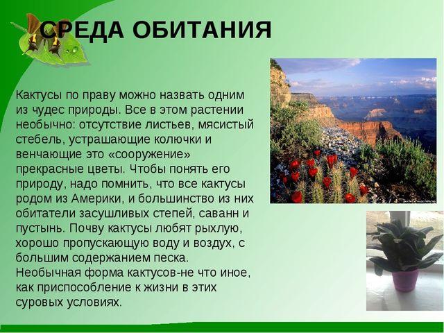СРЕДА ОБИТАНИЯ Кактусы по праву можно назвать одним из чудес природы. Все в э...