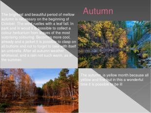 Autumn The brightest and beautiful period of mellow autumn is necessary on t