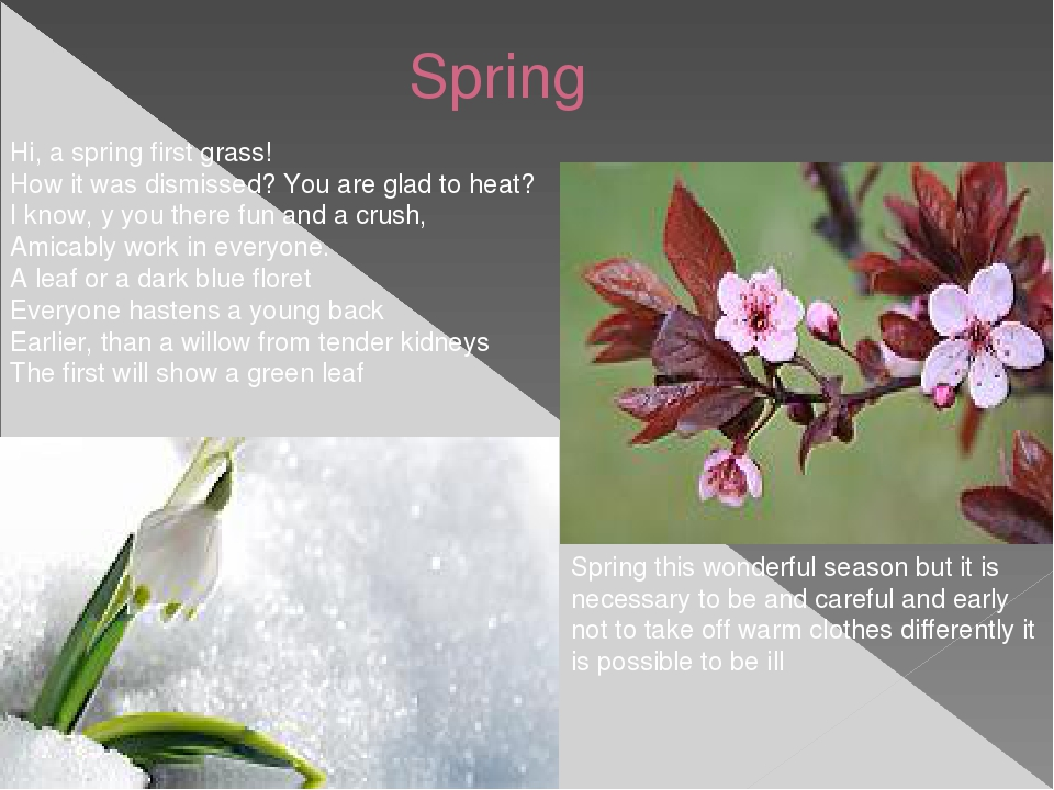 Spring Hi, a spring first grass! How it was dismissed? You are glad to heat?...