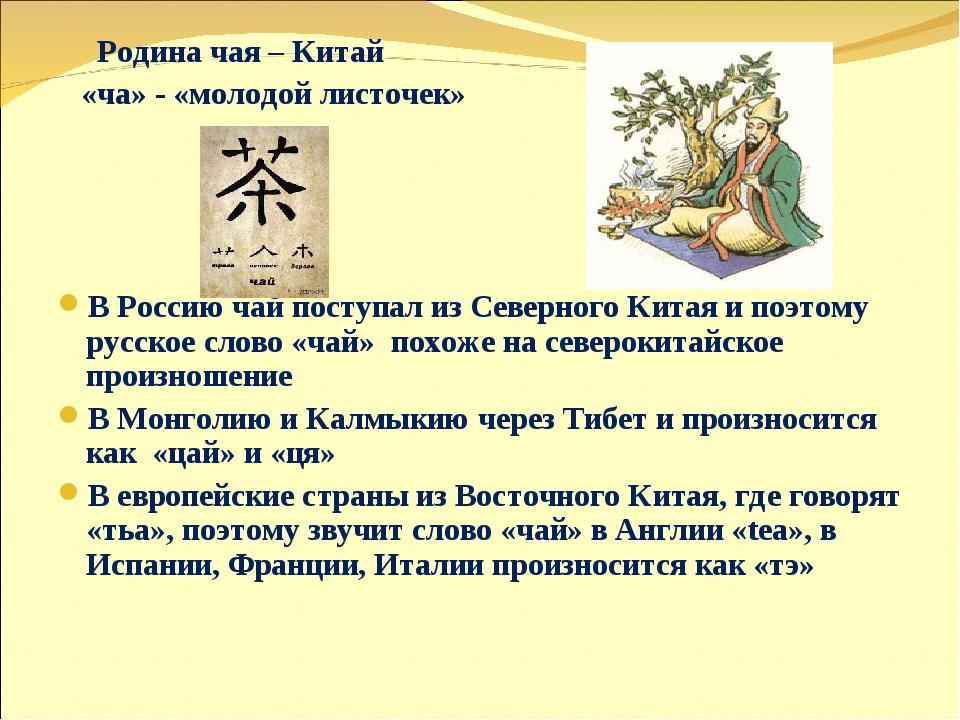 Родина чая – Китай «ча» - «молодой листочек» В Россию чай поступал из Северн...