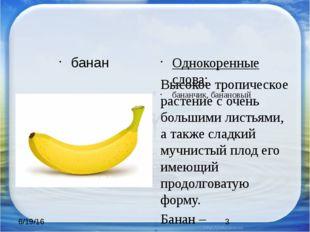 банан Однокоренные слова: бананчик, банановый Высокое тропическое растение с