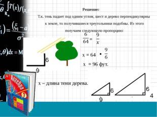 Решение: Т.к. тень падает под одним углом, шест и дерево перпендикулярны к з
