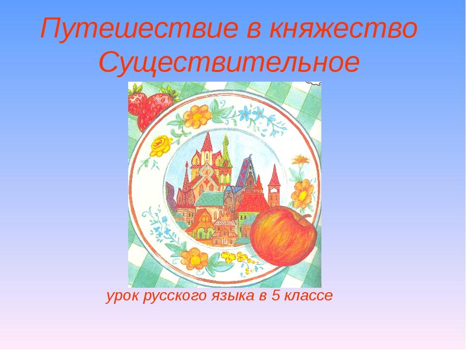 Путешествие в княжество Существительное урок русского языка в 5 классе