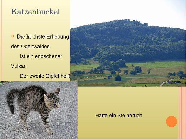 Katzenbuckel Die hӧchste Erhebung des Odenwaldes Ist ein erloschener Vulkan D...