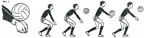 Основные элементы волейбола реферат 2140
