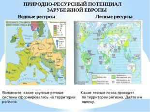 ПРИРОДНО-РЕСУРСНЫЙ ПОТЕНЦИАЛ ЗАРУБЕЖНОЙ ЕВРОПЫ Водные ресурсы Лесные ресурсы