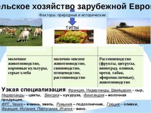 Сельское хозяйство зарубежной Европы Факторы: природные и исторические типы У