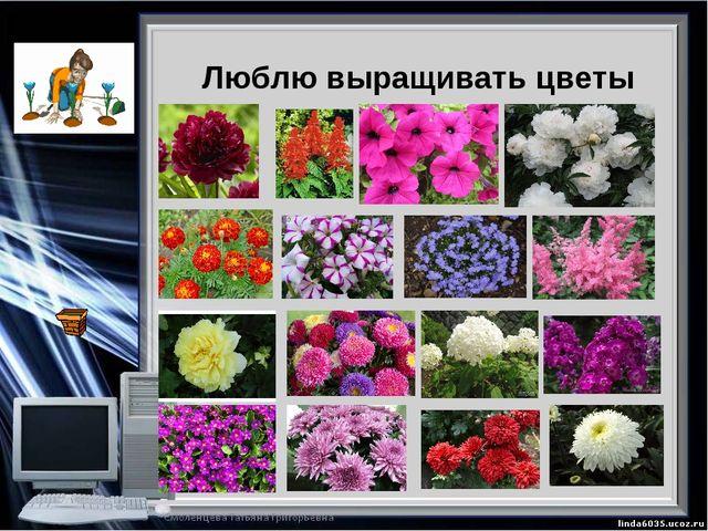 Люблю выращивать цветы