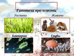 Гипотеза про плесень Растение Бактерии Животное Грибы