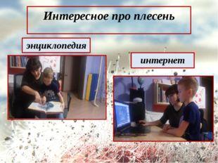 Интересное про плесень энциклопедия интернет