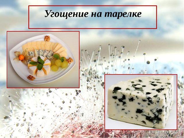 Угощение на тарелке