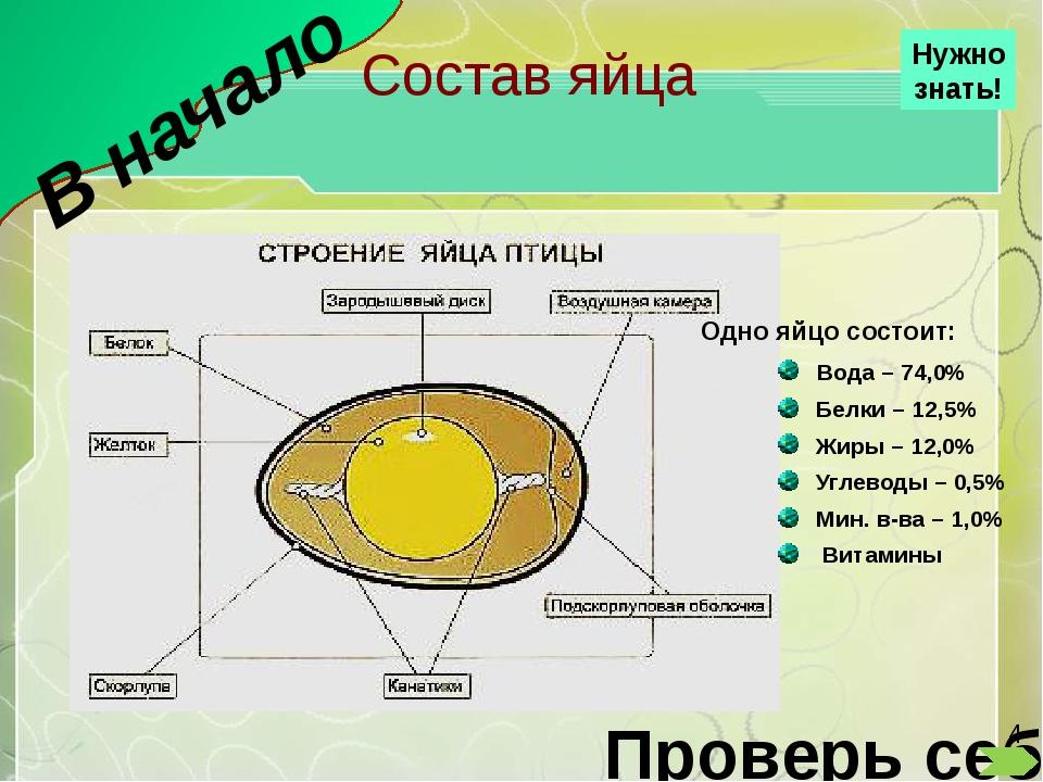 Пудинг В начало Ингредиенты: Яицо – 3 шт. Творог 9% – 250 г. Сахара – 100 г ,...