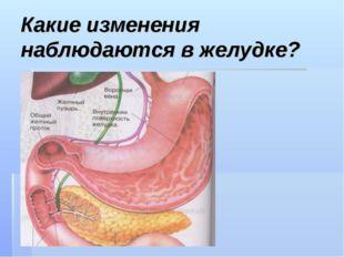 Какие изменения наблюдаются в желудке?