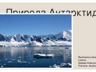 Природа Антарктиды Выпонила ученица 5В класса Хреева Александра Учитель: Аксё