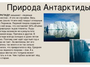 Природа Антарктиды АНТАРКТИДУ называют «ледяным континентом». И это не случай