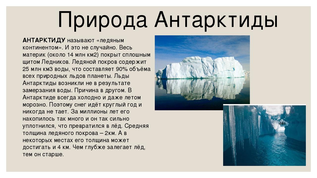Природа Антарктиды АНТАРКТИДУ называют «ледяным континентом». И это не случай...
