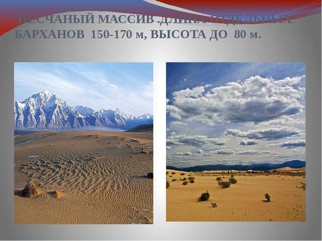 ПЕСЧАНЫЙ МАССИВ .ДЛИНА ОТДЕЛЬНЫХ БАРХАНОВ 150-170 м, ВЫСОТА ДО 80м.