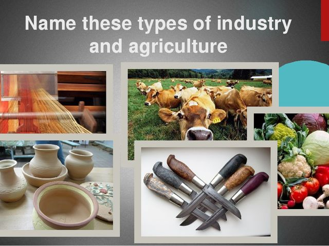 Name these types of industry and agriculture